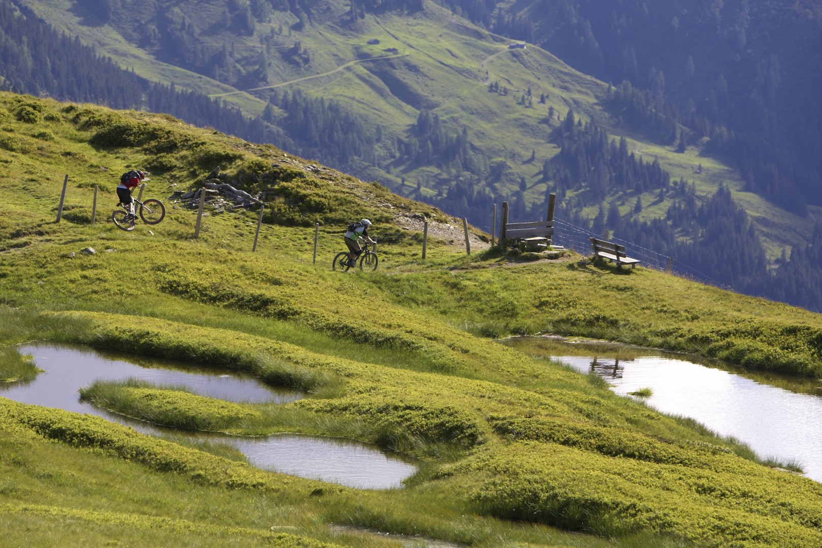 Mountainbiken at the Bikecircus Saalbach-Hinterglemm